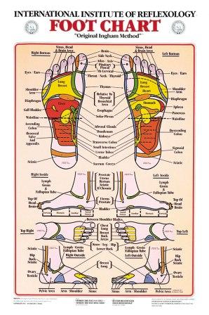 Foot.1